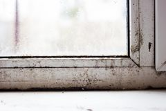 Moule sur les fenêtres en plastique, problème de famille, champignon sur des fenêtres images stock
