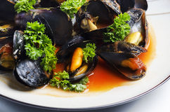 moules Photographie stock