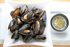 moules Images stock
