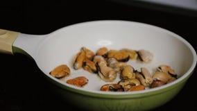 Moules appétissantes chaudes frites dedans dans la cuisine familiale foncée de fond de casserole clips vidéos