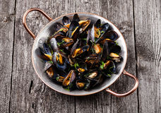 Moules bouillies Photo libre de droits