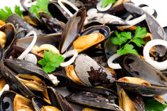 moules bouillies Images stock
