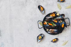 Moules bouillies en faisant cuire le plat sur le fond en pierre Photo libre de droits