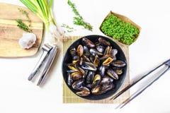Moules cuites à la vapeur par fruits de mer délicieux d'un plat Images libres de droits