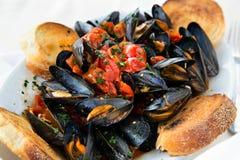 Moules dans le souce de tomate avec du pain dans le style italien Photographie stock