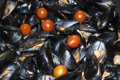 Moules de Mussels images stock