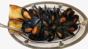 Moules Mariniere Royalty Free Stock Image