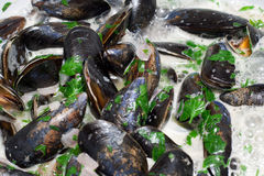 Moules Mariniere Cooking. In a White Wine Sauce Stock Images