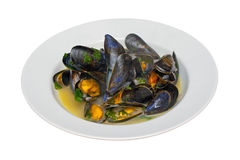 Moules Mariniere in a White Bowl Royalty Free Stock Images