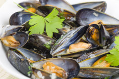 Moules Marinieres. Mussels cooked with white wine sauce Royalty Free Stock Image