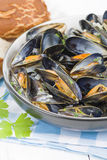 Moules Marinieres Stock Photos