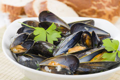 Moules Marinieres. Mussels cooked with white wine sauce Stock Photos