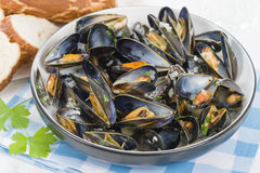 Moules Marinieres. Mussels cooked with white wine sauce Royalty Free Stock Photos