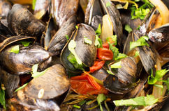 Moules Marinieres Stock Images