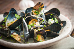Moules Marinieres - Mussels cooked with white wine sauce Royalty Free Stock Photography