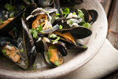 Moules Marinieres - Mussels cooked with white wine sauce.  Royalty Free Stock Images