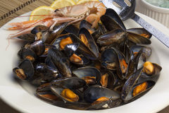 Seafood - Moules Marinieres - Mussels Royalty Free Stock Images