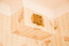 Moulez sur le plafond dans le vieil appartement Photos stock