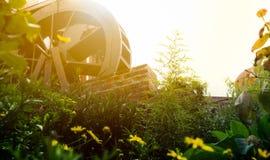 Moulin à eau et un champ des fleurs Photos stock