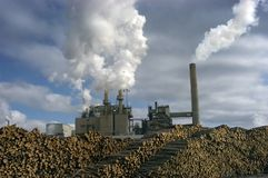 Moulin à papier avec des piles d'arbres à traiter photo libre de droits