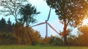 Moulin à vent au champ d'éoliennes un jour ensoleillé d'été banque de vidéos