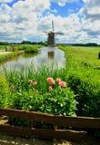 Moulin à vent avec des marguerites Photographie stock libre de droits