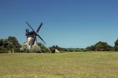 Moulin à vent dans le benz sur l'île d'Usedom Images libres de droits