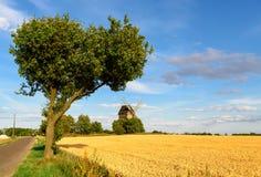 Moulin à vent dans un domaine de blé Photo libre de droits