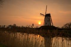 Moulin à vent de Damme en Belgique images libres de droits