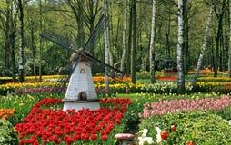 Moulin à vent de jardin de tulipe image stock