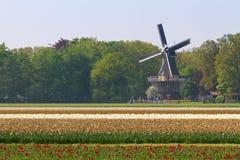 Moulin à vent de Keukenhof photos libres de droits