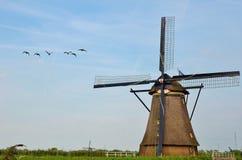 Moulin à vent et oiseau Image libre de droits