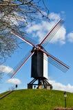 Moulin à vent, herbe verte, ciel bleu à Bruges Photos stock