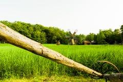 Moulin à vent, musée de village, Sibiu Image stock