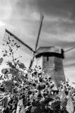 Moulin à vent néerlandais noir et blanc Photographie stock