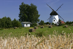Moulin de vent hollandais dans la campagne polonaise Photo stock