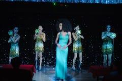 Moulin Rose Phuket Cabaret Show Royalty Free Stock Images