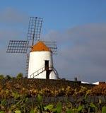 moulins à vent Afrique Espagne de cactus et le ciel Photos stock