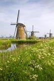 Moulins à vent chez Kinderdijk, Hollandes au printemps Photo stock