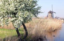 Moulins à vent chez Kinderdijk, Pays-Bas Photos libres de droits