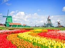 Moulins à vent néerlandais avec dans Zaanse Schans Images stock