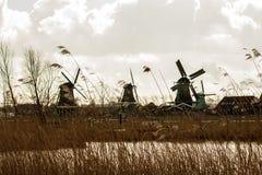 Moulins à vent néerlandais avec le foin dans le premier plan Image stock