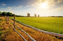 Moulins à vent sur le champ au coucher du soleil Photos libres de droits