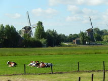 moulins Photographie stock
