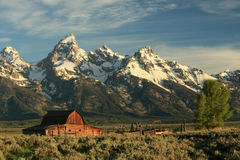 Moulton Barn. Horizontal view of Moulton Barn in Grand Teton National Park in Wyoming just after sunrise on spring morning Stock Photos