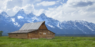 Moulton Barn below the Grand Teton mountains in Wy. The T. A. Moulton barn sits in a grassy field beneath the Grand Teton mountains in Wyoming royalty free stock photography