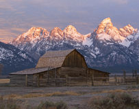 Moulton Barn on Mormon Row in Grand Teton at sunrise Royalty Free Stock Photos
