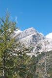 Mounatin bianco della roccia Immagini Stock