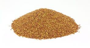 Mound Alfalfa Seeds Front View Stock Image