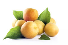 Mound of apricots with leafs Royalty Free Stock Photography